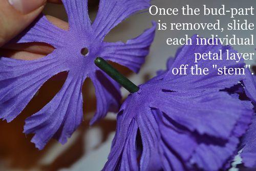 07 petal layers